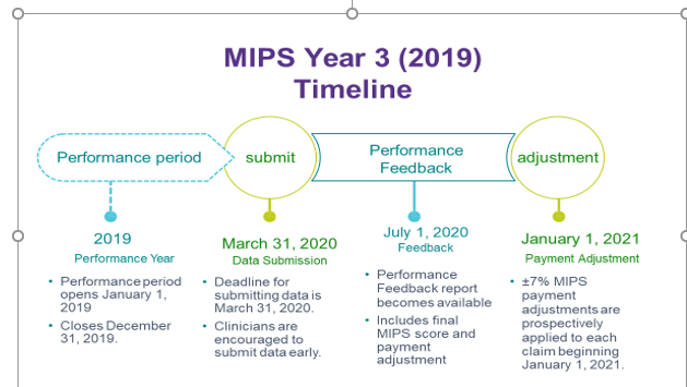 MIPS Year 3 2019 Timeline